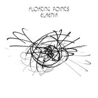 Image of Floating Points - Elaenia