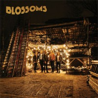 Blossoms - Blossoms