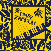 Image of Various Artists - Digital Zandoli