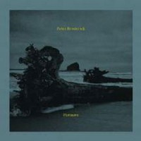 Image of Peter Broderick - Partners