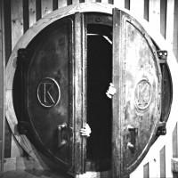 Image of Damaged Bug - Bunker Funk