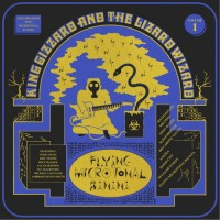 Image of King Gizzard & The Lizard Wizard - Flying Microtonal Banana