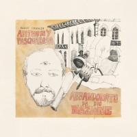 Image of Michael Chapman - VDSQ Solo Acoustic Vol. 11
