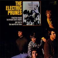 Electric Prunes Long Days Flight
