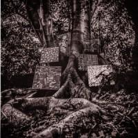 Image of Kamasi Washington - Harmony Of Difference