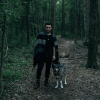 Image of Michael Malarkey - Mongrels