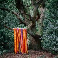 Image of James Holden & The Animal Spirits - The Animal Spirits
