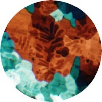 Image of Books - Sour Grapes EP Inc. Laurence Guy Remix