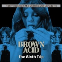 Image of Various Artists - Brown Acid: The Sixth Trip