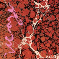 Image of Iceage - Beyondless