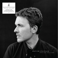 Image of David Sylvian - Dead Bees On A Cake