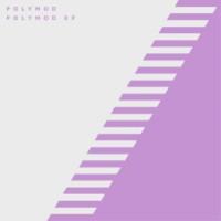 Image of Polymod - Polymod EP