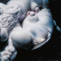 Image of Björk - Arisen My Senses Remixes - Inc. Kelly Lee Owens / Lanark Artefax / Jlin Remixes