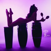 Image of Various Artists - Technicolour Paradise: Rhum Rhapsodies & Others Exotic Delights