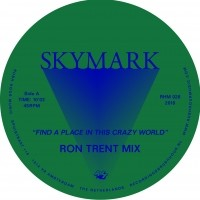 Image of Skymark - Find A Place In This Crazy World - Inc. Ron Trent Remix