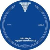 Image of Hailu Mergia - Yegojam Marnesh / Yegle Nesh