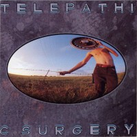 Image of The Flaming Lips - Telepathic Surgery