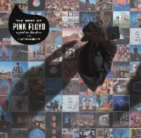 Image of Pink Floyd - A Foot In The Door - Vinyl Edition