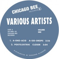 Image of Various Artists - Chicago Bee: Volume 1
