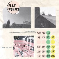 Image of Flat Worms - The Apparition / Melt The Arms