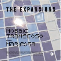 Image of Expansions - Mosaic
