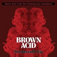 Various Artists - Brown Acid - The Seventh Trip