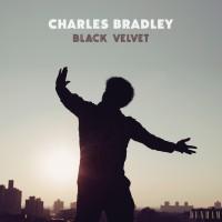 Image of Charles Bradley - Black Velvet