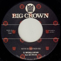 Image of El Michels Affair Feat Lee Fields - Never Be Another You (Reggae Version)