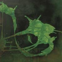 Image of Log(m) & Laraaji - The Onrush Of Eternity