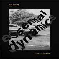 Image of Ilija Rudman - Essential Dynamics (Feat Kai Alce, Ashley Beedle, Fred Everywhere Remixes)