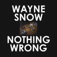 Image of Wayne Snow - Nothing Wrong - Ge-ology / Byron The Aquarius / James Braun Remixes