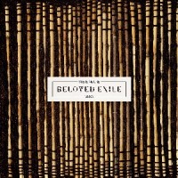 Image of Steve Moore - Beloved Exile
