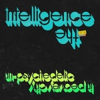The Intelligence - Un-psychedelic In Peavey City