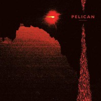 Image of Pelican - Nighttime Stories