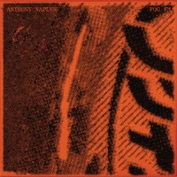 Anthony Naples - Fog FM