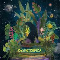 Chillum Trio - Cosmotropica