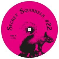 Secret Squirrel - No. 22