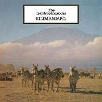 The Teardrop Explodes - Kilimanjaro - Vinyl Reissue