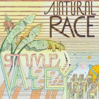 Image of Stump Valley - Natural Race