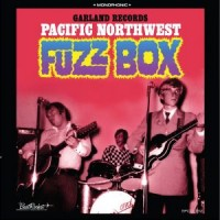 Image of Various Artists - Garland Records Present Pacific Northwest Fuzz Box