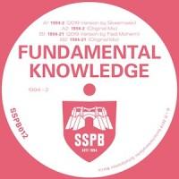 Image of Fundamental Knowledge - 1994-2
