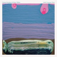 Image of Charles Rumback & Ryley Walker - Little Common Twist