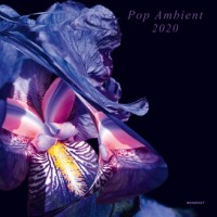 Image of Various Artists - Pop Ambient 2020