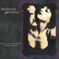 Lydia Lunch & Rowland S. Howard - Shotgun Wedding