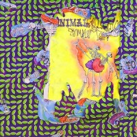 Image of Animal Collective - Ballet Slippers