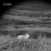Crake - Enough Salt (For All Dogs) / Gef