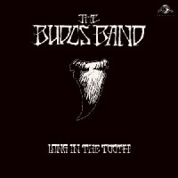 Image of The Budos Band - Long In The Tooth