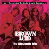 Various Artists - Brown Acid: The Eleventh Trip