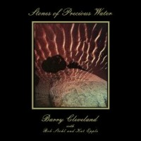 Image of Barry Cleveland - Stones Of Precious Water