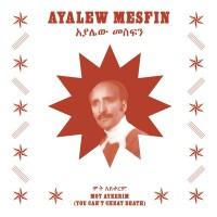 Image of Ayalew Mesfin - Mot Aykerim (You Can't Cheat Death)